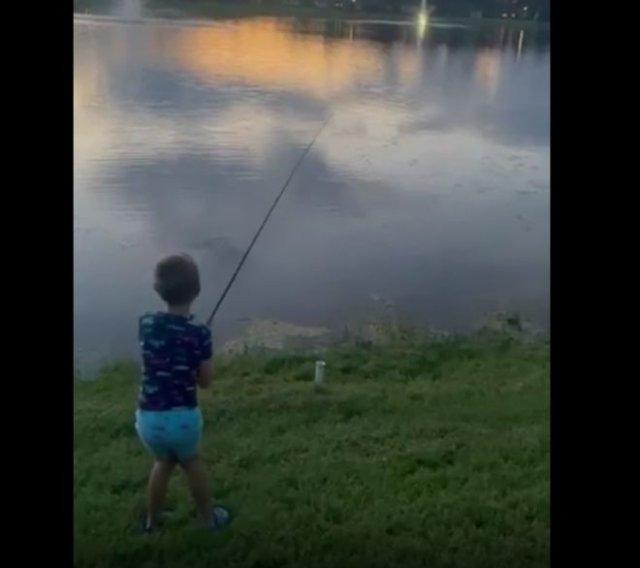 Аллигатор стащил улов у юного рыбака