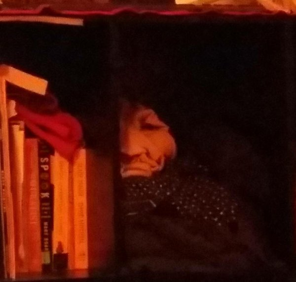 Кто-то спрятался за книжной полкой...