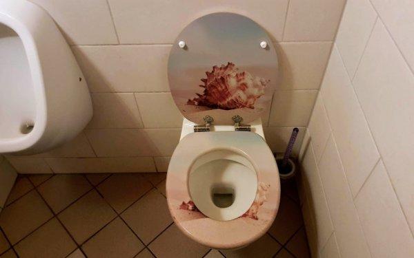 Вроде бы просто ракушка, но на первый взгляд кажется, что это пятна крови