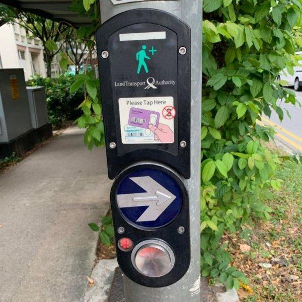 Работу светофора в Сингапуре можно продлить, используя автобусные карты для пожилых людей (старше 65 лет)