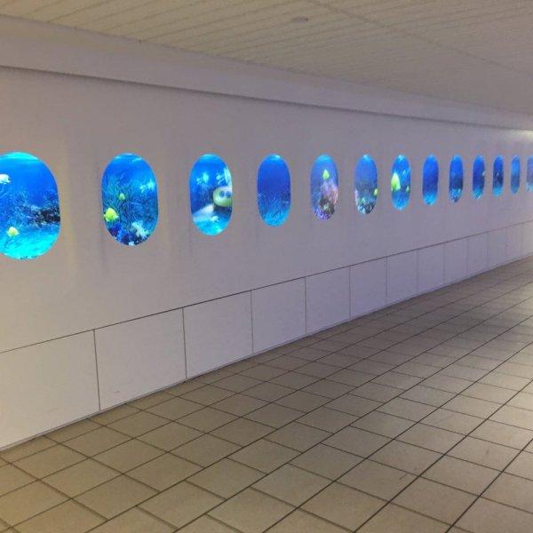 Наш аэропорт украсили дисплеями, похожими на иллюминаторы