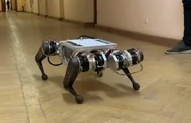 Ученые из МГУ разработали первую российскую робособаку - брата Boston Dynamics