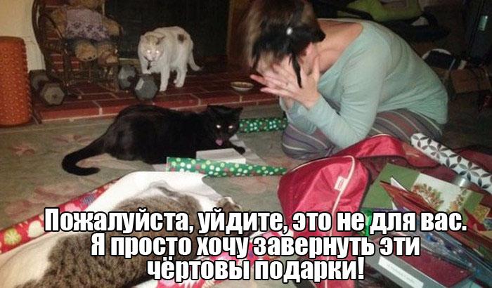 1450893070_podborka_vecher_58.jpg