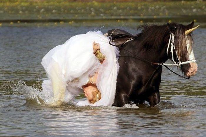 Лошадь испортила свадебную фотосессию американки (4 фото)