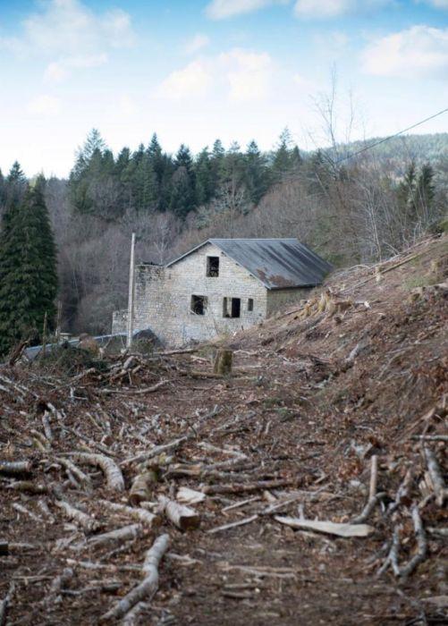 Владельцы старинного имения пожалели о том, что не ознакомились с контрактом (7 фото)
