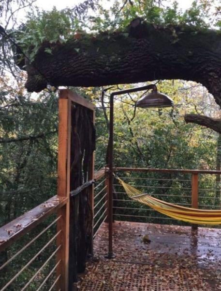 Гостевой домик на дереве (32 фото)