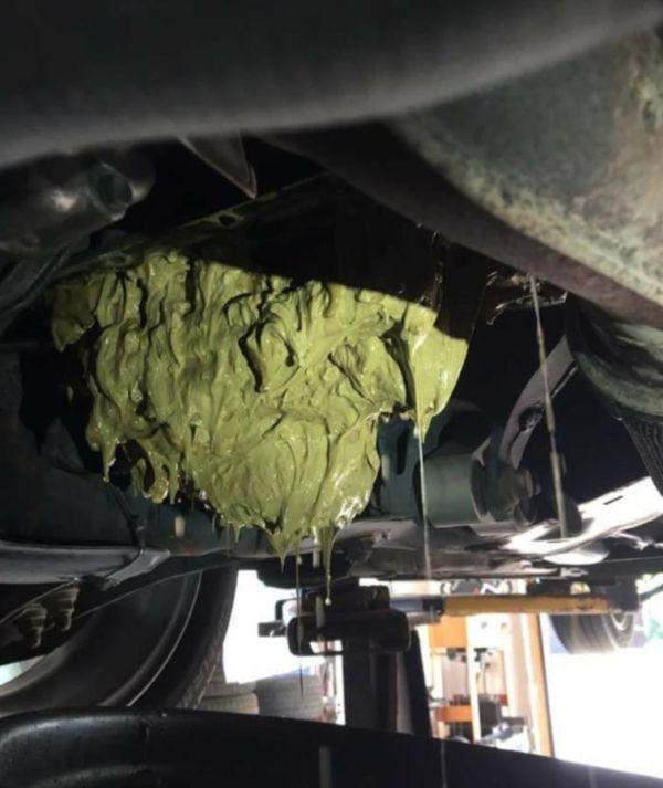 Автоледи залила жидкость стеклоомывателя в двигатель (2 фото)