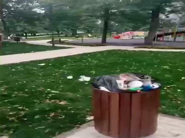 """Зачем убирать другие парки, когда есть """"Зарядье"""""""