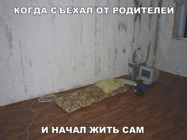 Прикольные картинки с текстом (20 фото)