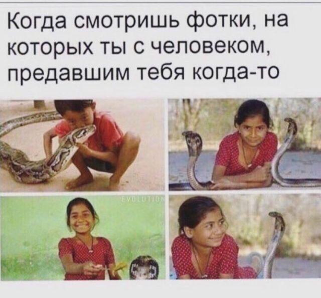 Смешные картинки с текстом (20 фото)