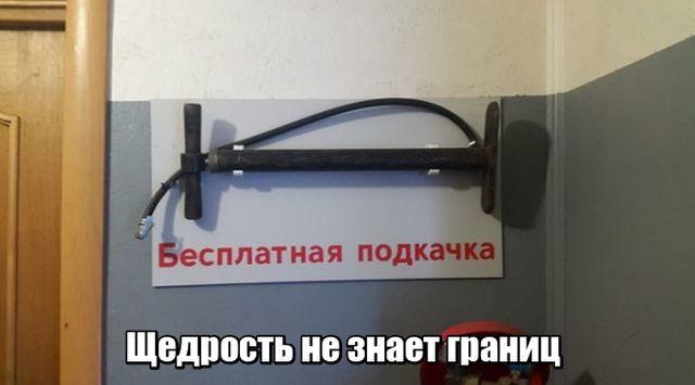 Смешные картинки с подписями (21 фото)