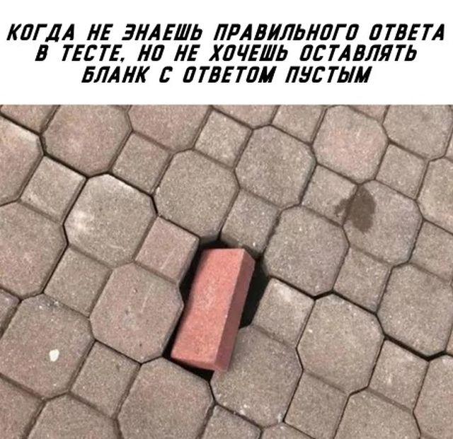 Смешные картинки (22 фото)