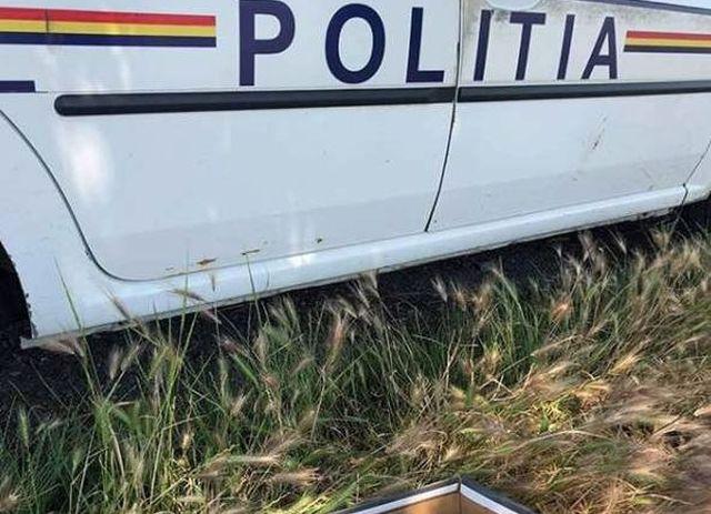 Мужчина обнаружил в поле коробку из-под обуви (7 фото)