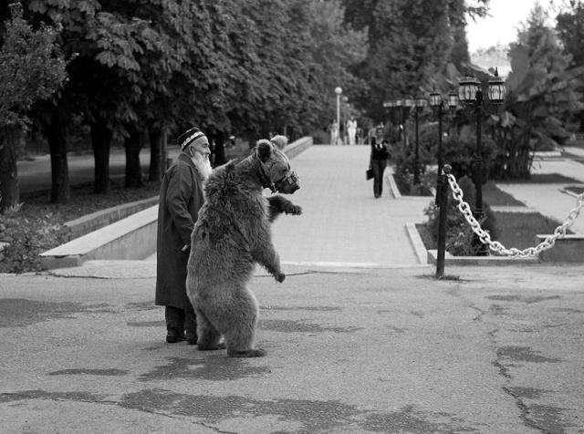 Трогательная история старика и медведицы по кличке Мария (6 фото)