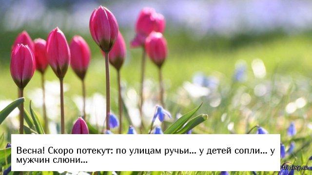 Последний день зимы или скоро весна (22 фото)