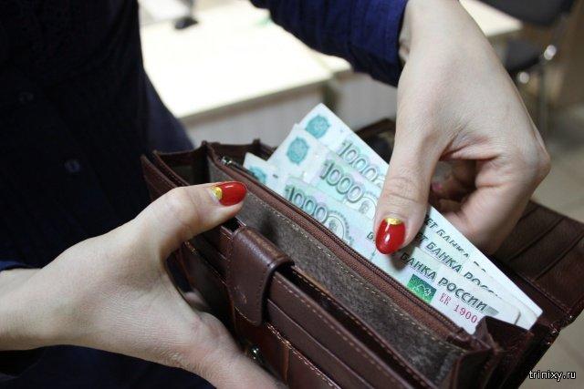 Сколько россиянам нужно зарабатывать в месяц для благополучной жизни