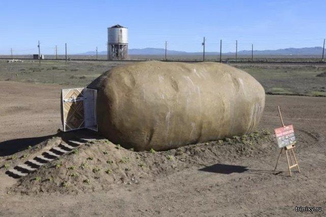 """Есть желающие провести ночь в огромной """"картошке""""? (14 фото)"""