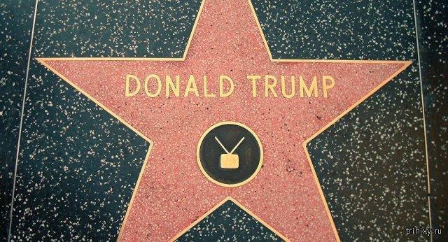 На звезде Дональда Трампа на Аллее славы появилась неожиданная надпись (3 фото)