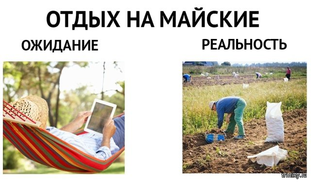 Юмор и шутки про майские праздники (22 фото)