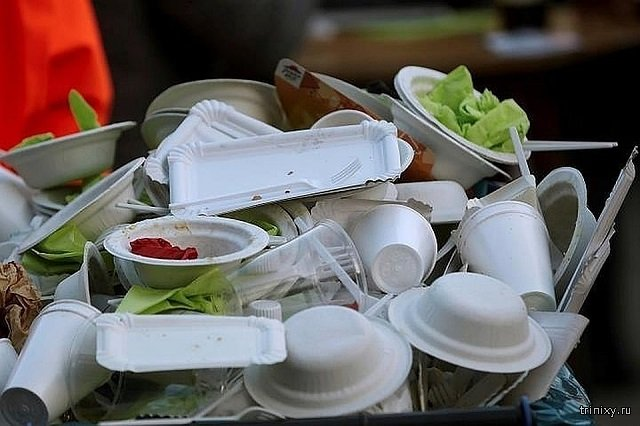 Хорошие новости. В России хотят запретить пластиковую посуду