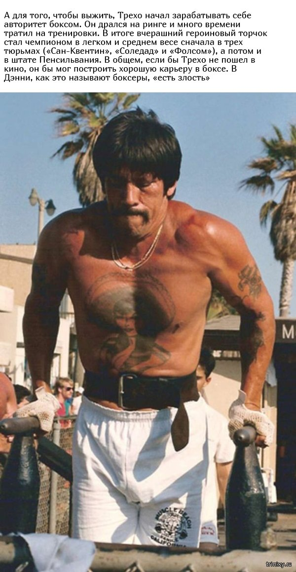 Интересные факты из жизни актера Дэнни Трехо (11 фото)