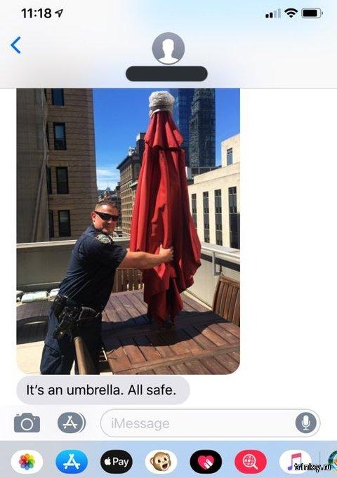 """Американка вызвала полицию, когда увидела """"служанку"""" на крыше дома (4 фото)"""