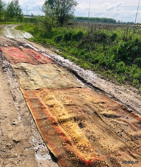 Калужские дачники застелили дороги коврами (4 фото)