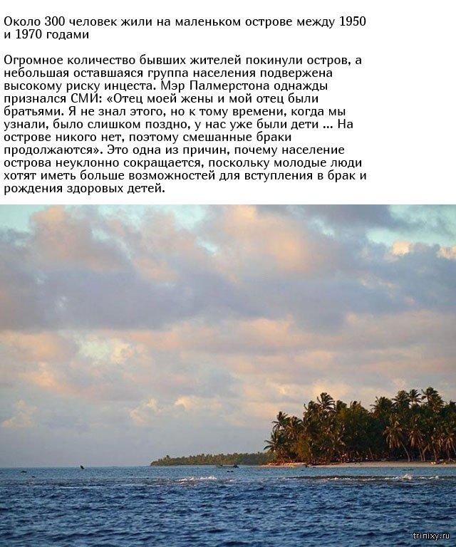 Все жители острова Пальмерстон произошли от одного и того же предка (9 фото)