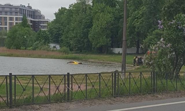 """В Питере вытащили из пруда """"золотую"""" Audi олимпийского чемпиона. На машине остались следы пуль (2 фото + видео)"""