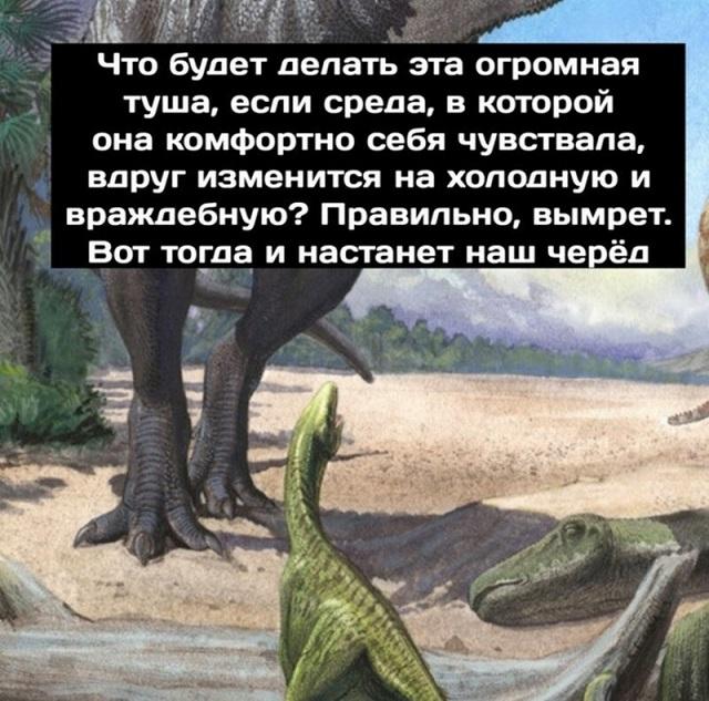 Минутка размышлений о приспособляемости видов от динозавров (9 картинок)