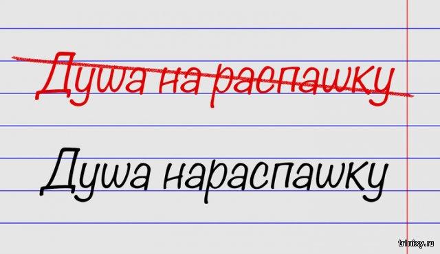 Минутка ликбеза. 15 выражений, в которых многие совершают ошибки (15 фото)
