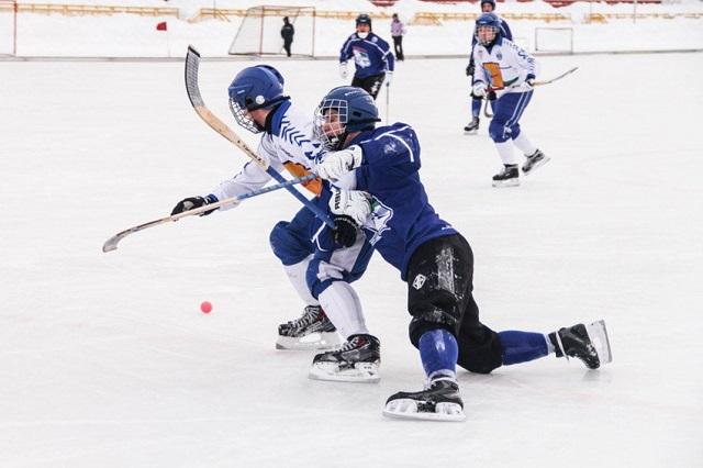 Федерация хоккея с мячом запретила СМИ критиковать игроков и судей