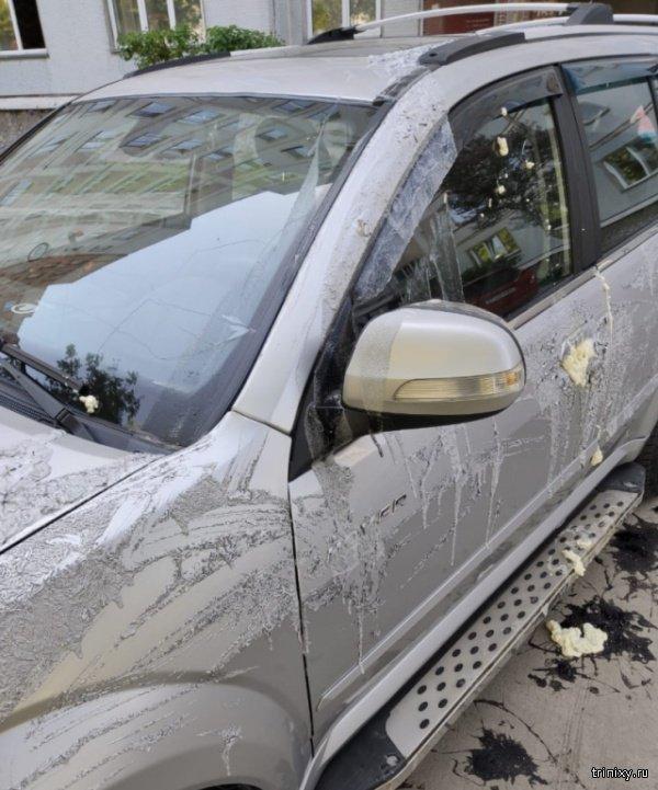 Неприятный сюрприз для автолюбителя из Новосибирска (5 фото)