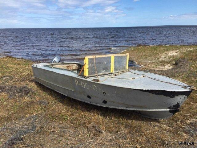Браконьеры на заливе Байкале порыбачили на 5,7 миллиона (10 фото)