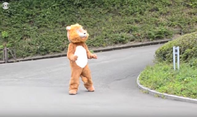 Как в японском зоопарке репетируют побег льва