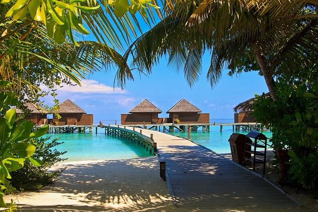 Пакуйте сумки. Россия и Мальдивы подписали соглашение о взаимной  отмене виз