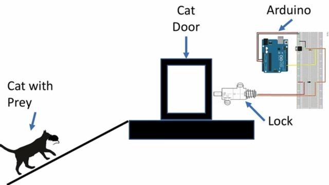 Искусственный интеллект против кота (3 фото)