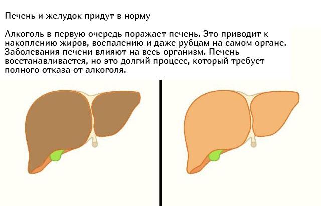 Что будет с организмом, если перестать принимать алкоголь (6 фото)
