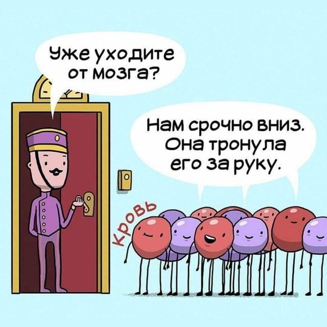 Серия комиксов о работе внутренних органов человека (10 фото)