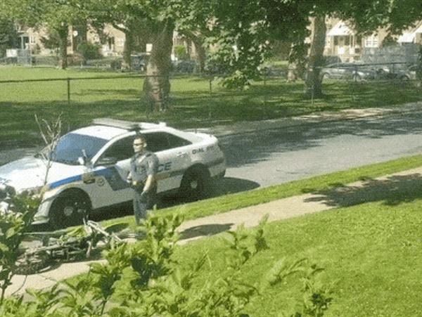 Когда полиция появляется вовремя (17 гифок)