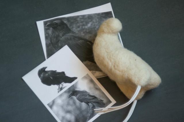 Необычный ворон (4 фото)