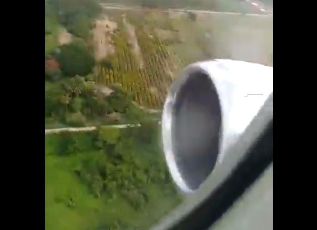 В двигатель самолета Boeing 737-300 во время взлета попала птица