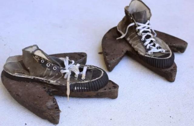 Тайна трехпалых следов, которую раскрыли спустя много лет (4 фото)