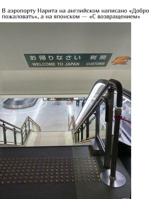 Заботливая Японии (16 фото)