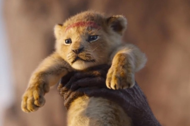 """Симбу из """"Короля льва"""" рисовали с настоящего львенка (12 фото)"""