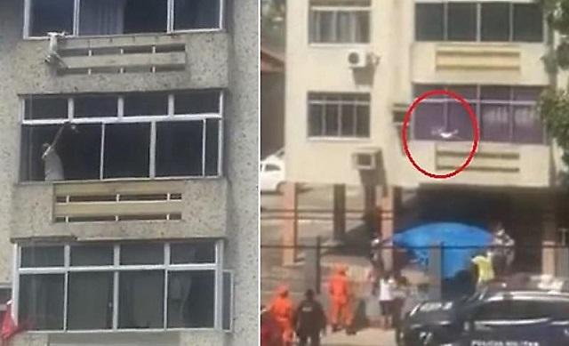 В Бразилии спасли собаку, которая выпала с 6-го этажа здания