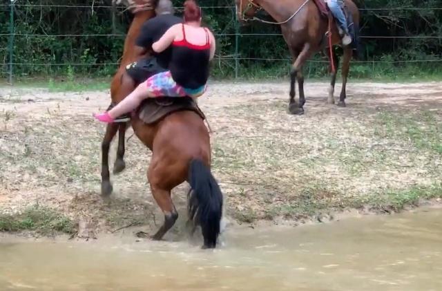 Прогулка на лошадях закончилась эпично (12 фото)