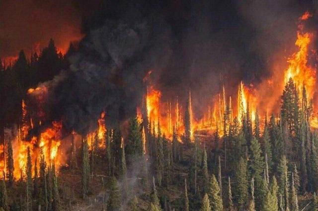 Смог от пожаров в Сибири: казахстанцы жалуются на плохое самочувствие