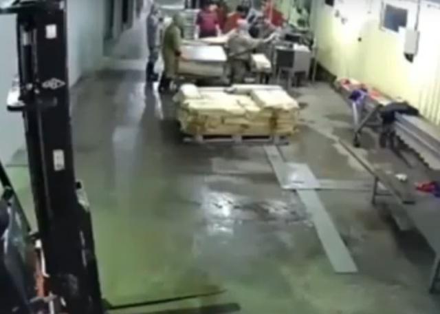"""""""Проверка"""" на рыбном заводе на Сахалине"""