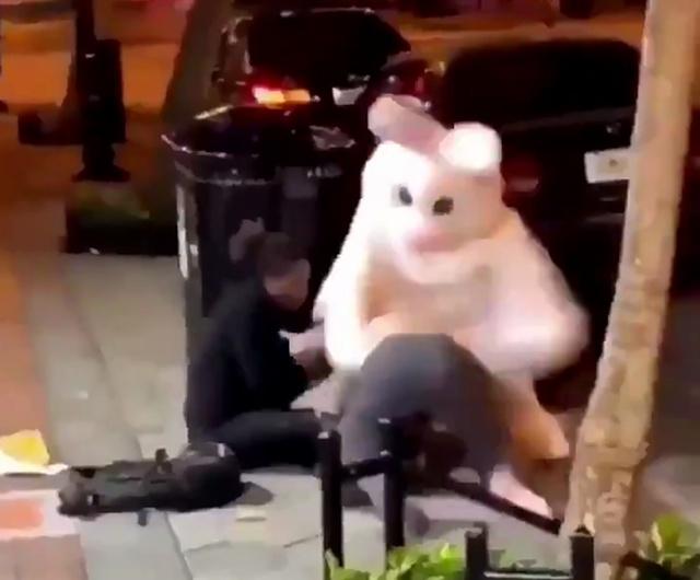 """Не нужно было злить """"кролика"""""""